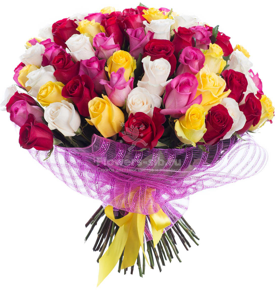 BOUQUET OF 75 ROSES at the price 7586 - delivery of bouquets flowers ...